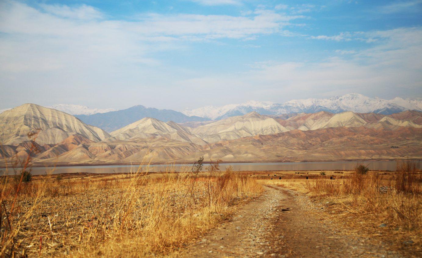 Kirgizische